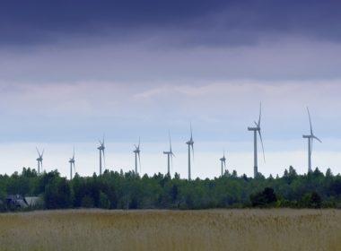 Które przedsiębiorstwa są zobligowane do zrobienia audytu energetycznego?