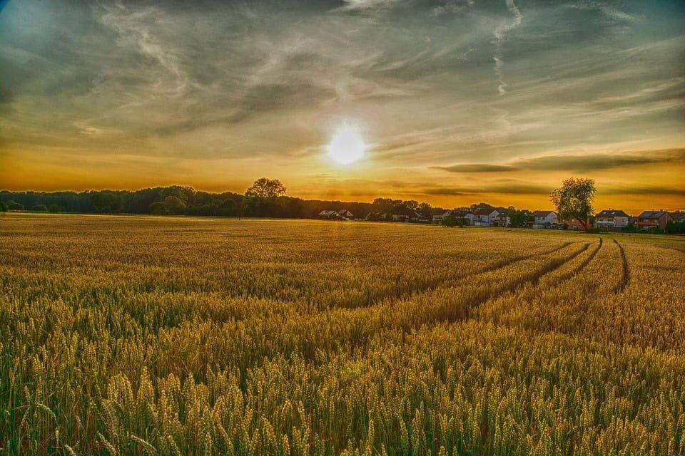 Kupno i sprzedaż ziemi – szykują się wielkie zmiany