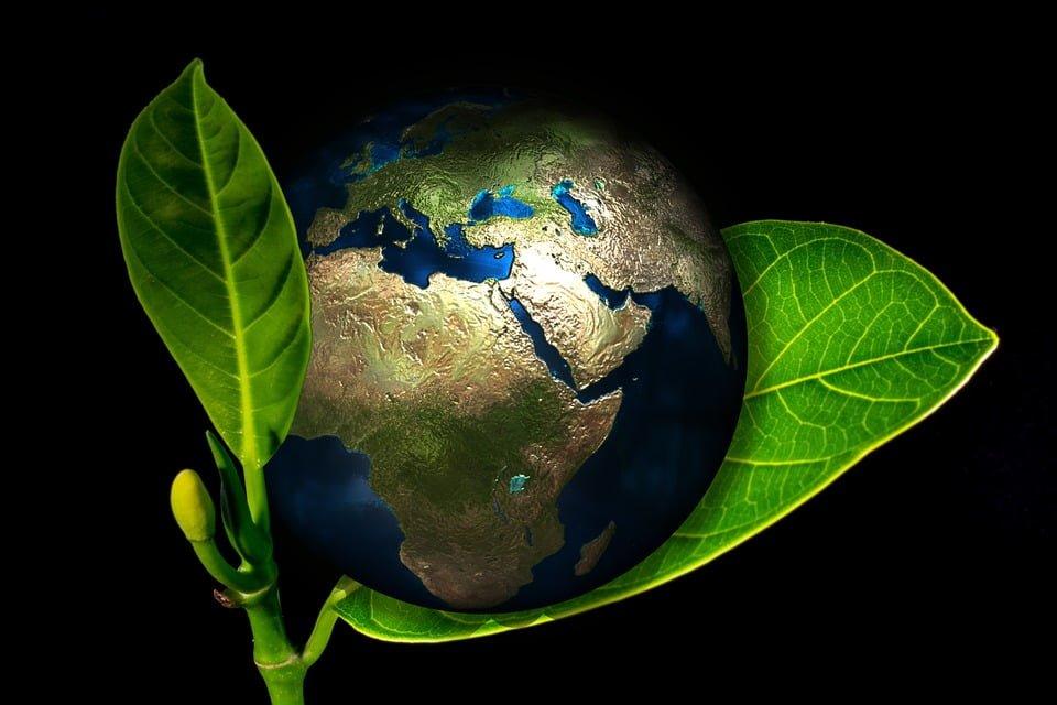 Ministerstwo Środowiska rezygnuje z projektu ustawy