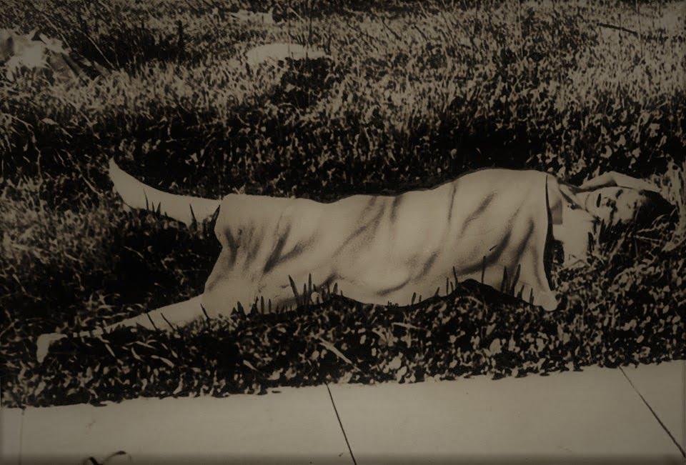 Ciało Elisabeth Short (fot. stevehodel.com)
