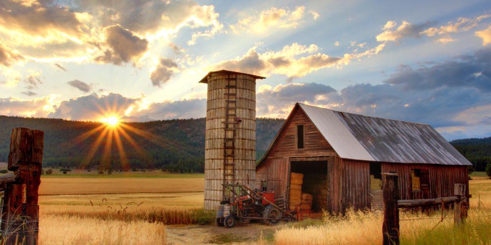 Pomoc dla zadłużonych rolników - rząd przyjął program wsparcia