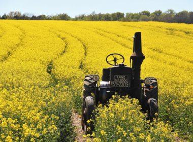 Łatwiejsza sprzedaż nieruchomości rolnych