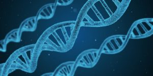 Rzecznik po raz kolejny upomina się o uregulowanie zasad badań DNA