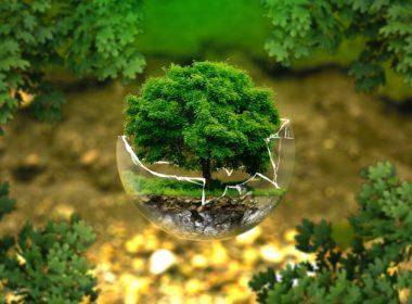 Ograniczenie korzystania z nieruchomości w związku z ochroną środowiska