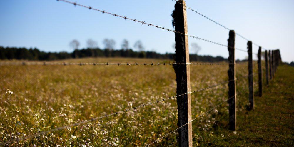 1,5 mld złotych - największa w historii pomoc suszowa