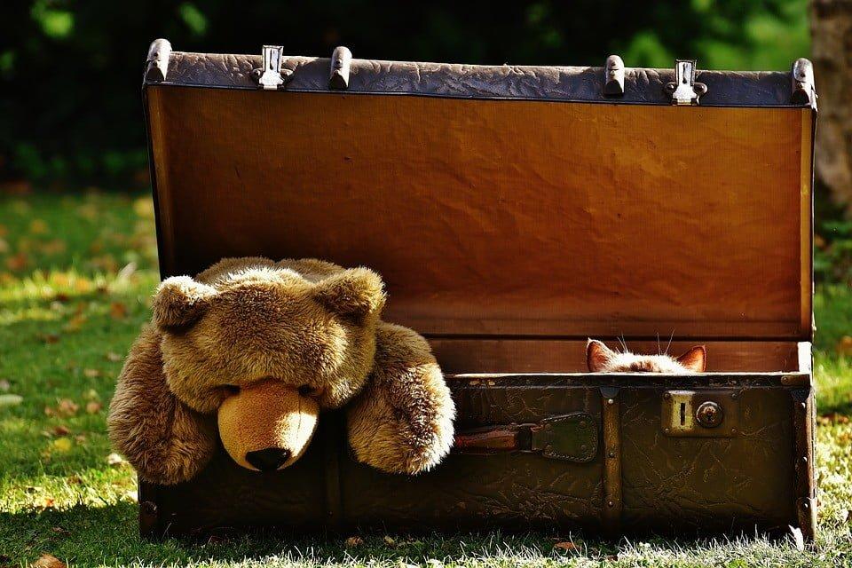 Eksmisja dzieci lub chorych członków rodziny dłużnika, który traci prawo własności do mieszkania