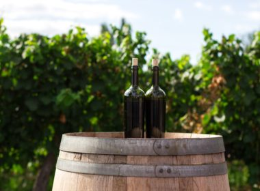 Produkcja alkoholu na własny użytek – czy jest legalna?