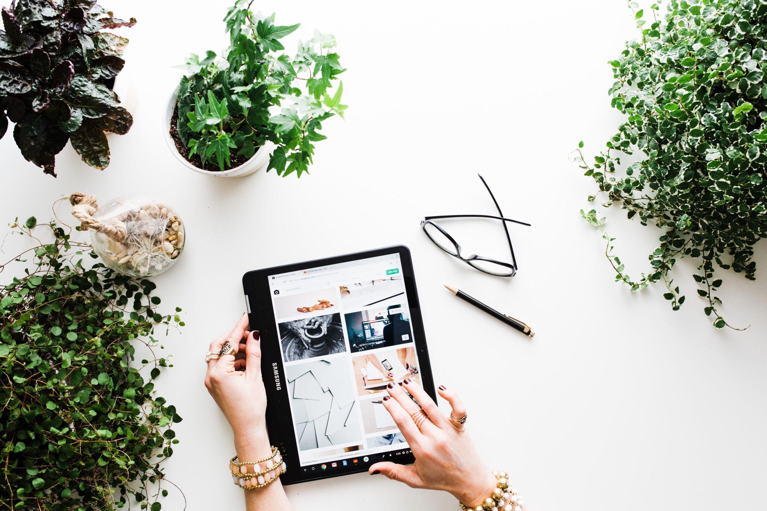 Jak założyć sklep internetowy? Poradnik dla początkujących