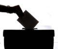 Wybory: czynne i bierne prawo wyborcze